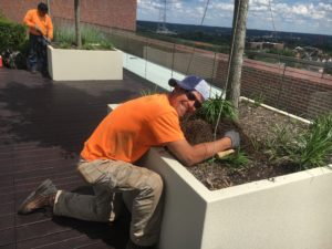 Leak Repair at Christ Hospital Roof Garden